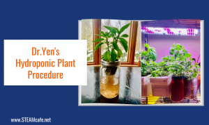 Dr.Yen's Hydroponic Plant Procedure